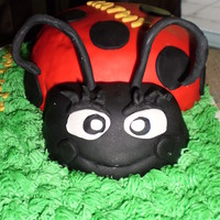 Ladybug Cake 2 layer French vanilla cake, with creamy buttercream icing covered in vanilla fondant. Everything is 100% edible (head & body are all...