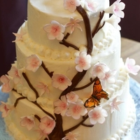 Cherry Blossom Cake 3 tier Cherry Blossom design. fondant Flowers and butterflies, modeling chocolate.
