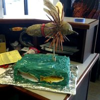 Fly Fishing Cake Fly fishing cake I made for a friends birhtday.