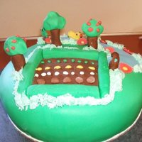 Farmville Cake This I did just for fun. As all my friends were on Farmville and became addicts. LOL