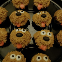 "Puppy Cupcakes Puppy cupcakes for my daughter's 5th birthday ""Puppy Kitty Party"""