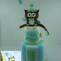 Owl 1 Cake   This waas made to match the party invitations. The owl is cake and made to be a removable smash cake.