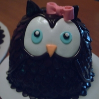 Baby Owl   chocolate fondant covered cake