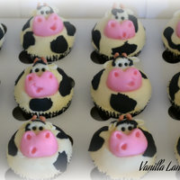 Cow Cupcakes Chocolate Cake Vanilla Buttercream Modelling Chocolate For Cows And Thin Rolled Fondant For Patches Cow Cupcakes Chocolate cake, vanilla buttercream, modelling chocolate for cows and thin rolled fondant for patches :)
