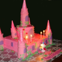 Pink Princess Castle Birthday Cake   Castle Birthday Cake for 5yr old girl, who loves all things pink and sparkly