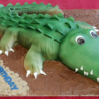 Crocodile Cake Crocodile cake made out of choc mud covered in choc ganache then marshmallow fondant and airbrushed. Board was covered in chocolate...