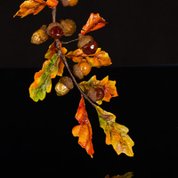 Indian Summer Acorns - With Wafer Paper And Isomalt I grew up in western Pennsylvania and we had what the locals called Indian Summer. Warm days, cool nights and vivid color EVERYWHERE for a...