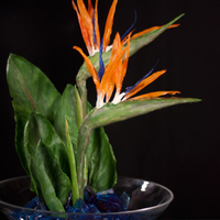 Bird Of Paradise Full sized flowers weigh 6.5-7oz.Wafer paper base painted with colored cocoa butter.Only armature is a boba straw stem over a chopstick in...