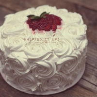 Whipped Cream White Rosettes Vanilla Bean Cake with fresh strawberry whipped filling and fresh whipped frosting