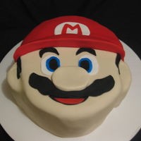 Mario Brother's Cake shaped from a 9inch cake