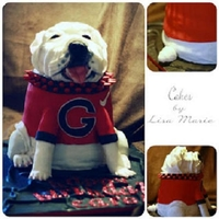 Georgia Bulldogs Mascot For my best friend for her birthday. I am happy with the results!