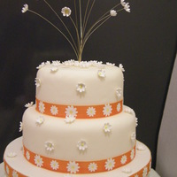 Daisy Daisy Perfect for a spring/sumer wedding!!