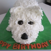 Puppy Made for a very special girl who had never had a proper birthday cake. She loves animals - particularly dogs, so this was what I came up...