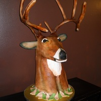 "3D Whitetail Deer's Head Cake We are very proud of the finished product. There is no rice cereal treats in this design, the neck was made of (7) 2"" round cakes. For..."