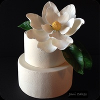 Magnolia Flower Wedding Cake Fondant Covered Chocolate Cake Topped With Gumpaste Flower Magnolia flower wedding cake. Fondant covered chocolate cake topped with gumpaste flower