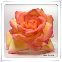 Peace Rose My Moms Favorite Flower I Used Gumpaste Peace Rose, my moms favorite flower. I used gumpaste