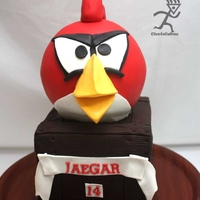 Angry Bird Cake made for my awesome nephew
