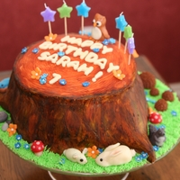 Woodland Tree Stump Birthday Cake Inspired by beautiful tree stump babyshower cakes here on cakecentral, my daughter decided on a woodland theme for her 7th birthday party,...