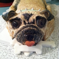 Dog Cake This was a Mother's Day cake, and looked like their pet pug. The head is RKT. I used modeling chocolate to cover the cake.