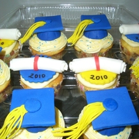 Graduation Cupcakes Cupcakes for a Hofstra University Grad