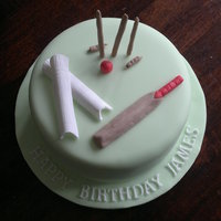 Cake For A Cricket Lover Thanks Other Cc Members For The Idea Cake for a cricket lover. Thanks other CC members for the idea.