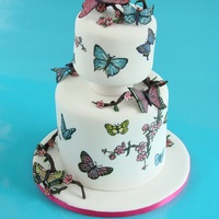 Painted Butterfly Cake