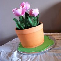 My Flower Pot Cake   *My flower pot cake