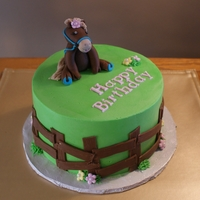 Birthday Cake For Horse Lover   Gluten free chocolate cake, buttercream iced with fondant detail. Gumpaste horse figure
