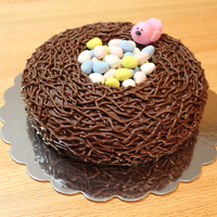 "Easter Nest Cake I found this idea on a cake blog - can't remember which one now! It was really easy to do. Yellow cake baked in a 9"" contour pan..."