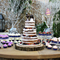 Winter Themed Rustic Naked Wedding Cake With Handmade Little Big Planet Cake Toppers Fashioned After The Bride And Groom Complete With A U... Winter themed rustic naked wedding cake with handmade Little Big Planet cake toppers fashioned after the bride and groom. Complete with a...