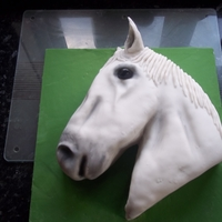 White Horse I was asked by my DIL to do a cake for her brothers girlfriend she is horse mad and her horse is white with no particular markings so she...