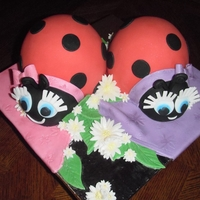 Ladybugs For Twins