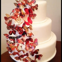 Butterflies! 12/9/6 - All butterflies are edible. Rose is Gumpaste