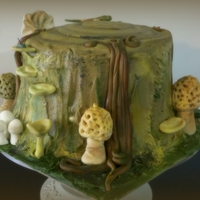 Tree Trunk Cake Morel Mushrooms Tree trunk cake gumpaste morel mushrooms and other fungi
