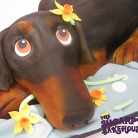 Doberman Wedding Cake Meet Khan the Doberman! This cake was hand carved from 3 rectangular chocolate cakes and stacked with chocolate buttercream and crumb...