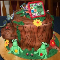 Geocaching Together  Cake for my daughter and her friend. Geocaching was the birthday activity. Chocolate cake, butter cream icing and fondant. Side branch was...
