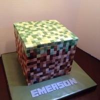 "Minecraft Cube Cake 8x8 cube cake with 1280ish 1/2"" squares. This took forever!"