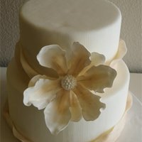 Ivory And Champagne fondant ribbon and handmade gumpaste magnolia