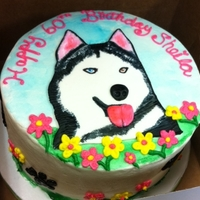 60Th Birthday Cake - Husky Dog Buttercream cake with a fondant husky dog, hand painted.