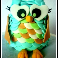 Baby Owl Chocolate cake with chocolate icing. Carved and shaped and decorated with fondant details.