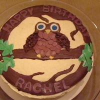 "Hoot Hoot 8"" round cake. Buttercream Icing, Modeling Chololate decorations"