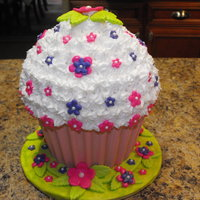 My First Cupcake Cake This was a practice cake that I will be making for my granddaughter's 1st birthday coming up in September. It will be decorated to...