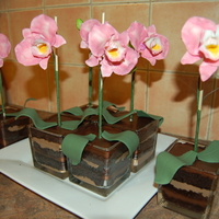 The Orchid's Pot Is The Cake!  This idea came from another CCers, RoadrunnerGer. I made a mini version for individual serving. I made a chocolate cake with layer of...