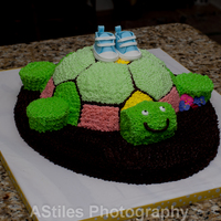 Shoes Made From Gum Paste Cake Was For A Baby Shower That Was Turtle Themed Armslegs And Turtle Head Were Cupcakes The Body Of The Tur  Shoes made from gum paste, cake was for a baby shower that was turtle themed. Arms,legs and turtle head were cupcakes. The body of the...