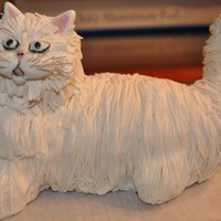 White Persian Cat I was asked if i could make a white Persian cat for an upcoming birthday cake....so I gave it a try and heres what he looks like...I'm...