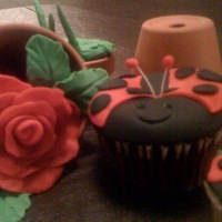 Ladybugs In The Garden cupcakes with sugar accents