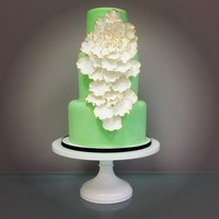 Gold Edged Petal Cake