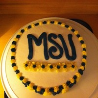 Msu Cake Two layer eight inch round iced in all BC