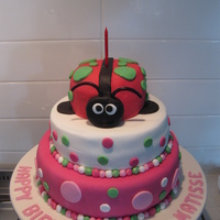 Lady Bug   I made this cake for the little girl across the road from me everyone just love it.