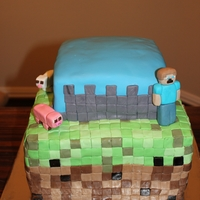 Minecraft Birthday Cake   This is a three layer vanilla cake with nutella filling on the bottom and the top tier is chocolate with nutella..